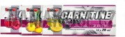 VISION-nutrition L-Carnitine 4000 12 x 25 ml ampule