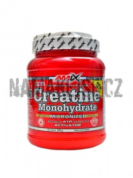 Amix Creatine monohydrate powder 500 g -